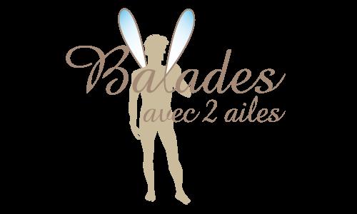 Création du logo Balades avec 2 ailes