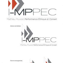 Création de logo pour Mathieu Pruvost consultant